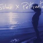 SUMO X PETTINATO